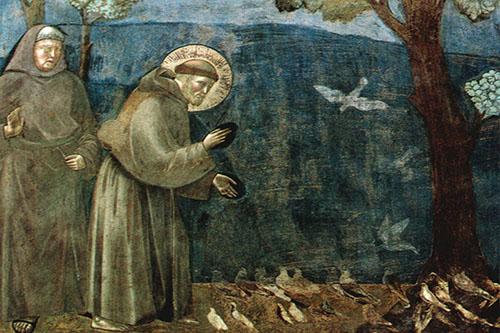 predica agli uccelli1